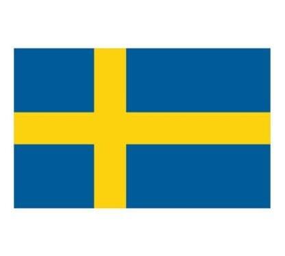 Gästflagga Sverige 30 x 20 cm