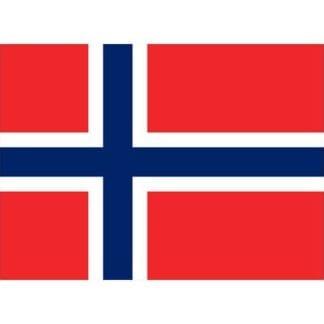 Gästflagga Norge 30 x 20 cm